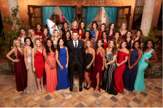 nick viall the bachelor ladies